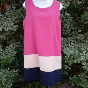 Papillon Color Block Tank Dress